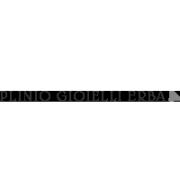 Logo Plinio Gioielli