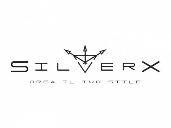 creazione logo SilverX webagency di Como